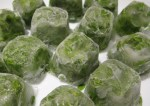 Frozen Garden Basil in ice cube trays