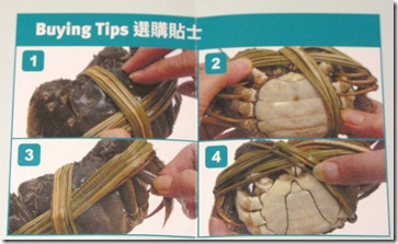 Buying Tips for Shanghai Crabs