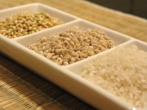 Korean brown sweet rice, barley & arborio rice